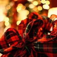 Red plaid for Christmas*